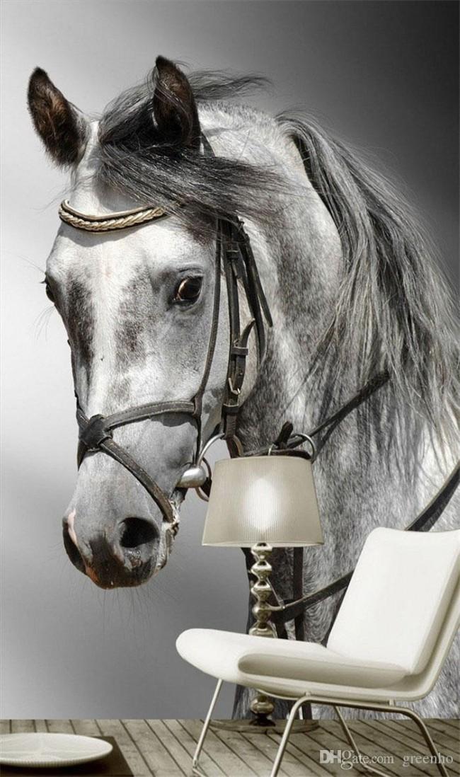 djur tapet häst fototapet