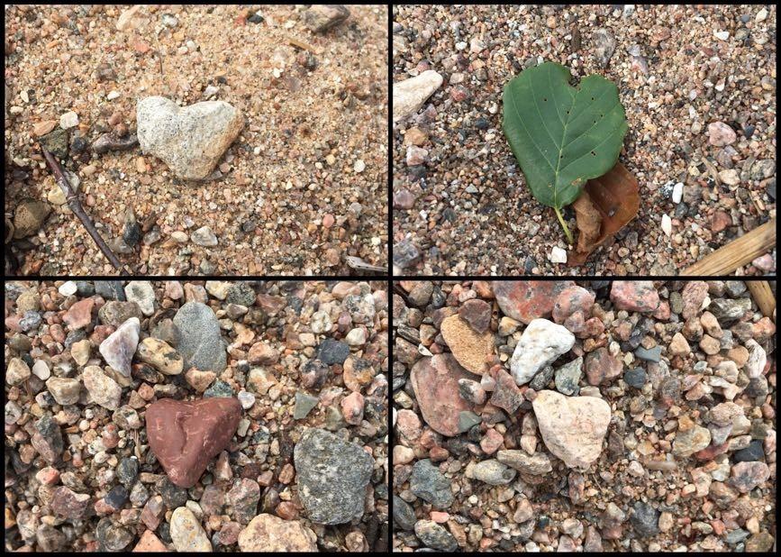 Hjärtan -Kärlek finns i många former