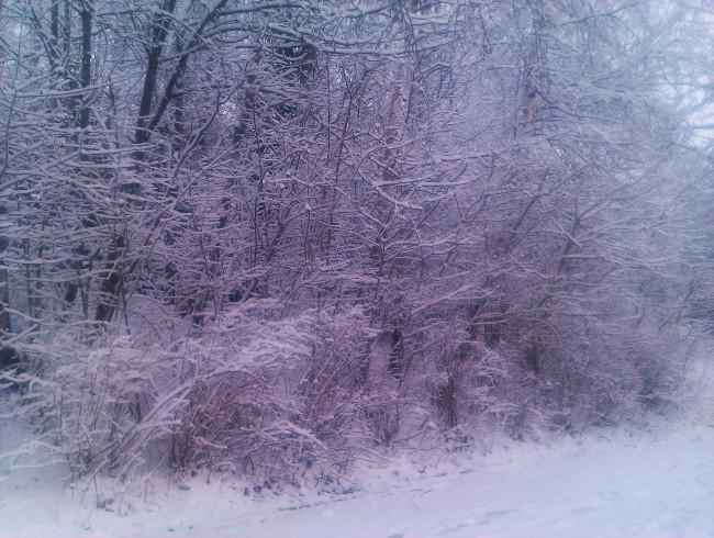 vinter!!!!!