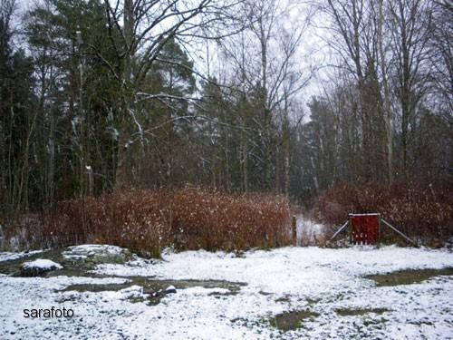 Det har snöat i hundgården