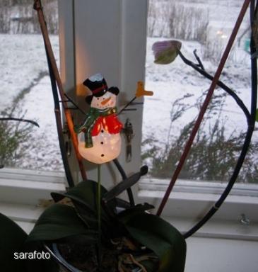 Snögubbe på pinne platsar i blomkrukan