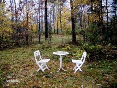 vitt möblemang i skogsparken