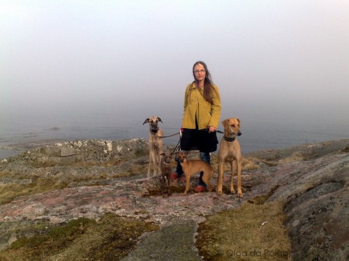 hundarna och jag