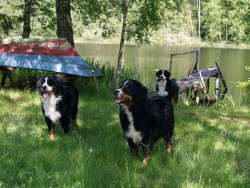 Ewa, Bosse och Siri vid sjö