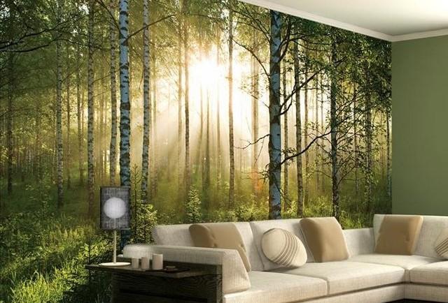 tapet skog solnedgång trädstammar 3d fototapet