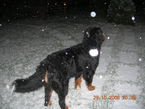 första snön 2