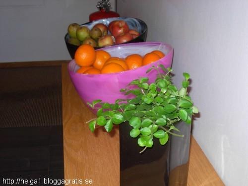 frukt på htl i GOT
