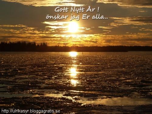 Gott Nytt År önskar jag Er alla...