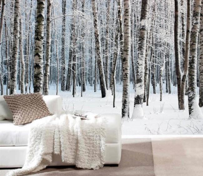 björktapet vinter snö tapet björkstammar fototapet skog
