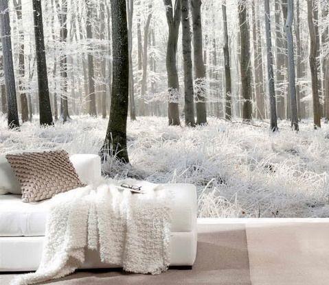 tapet sovrum skog tapet  trädstammar fototapet sovrum svart vit vinter tapet