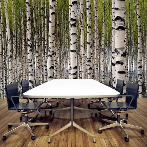 tapet med björkträd björkstammar fototapet kontor trädstammar skogstapet