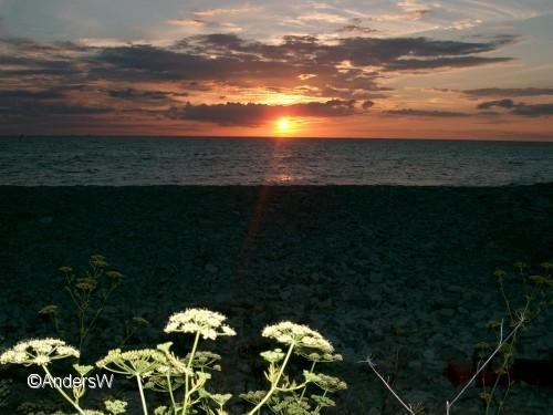 solnedgång byxelkrok