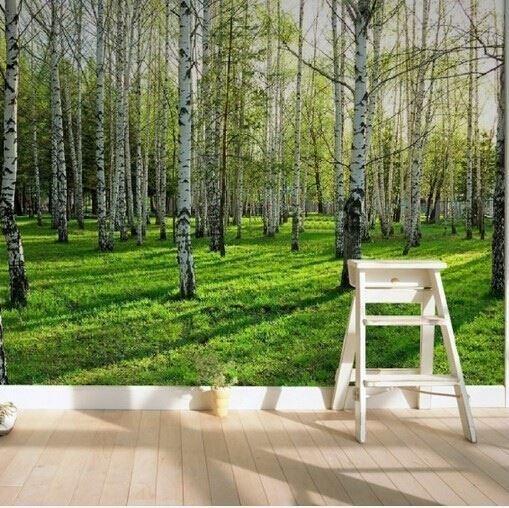 fototapet björk skog träd stammar gräs 3d tapet