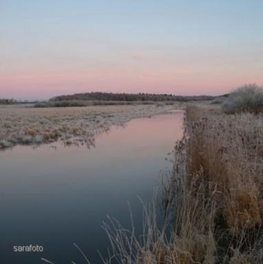 Holmsån rodnar i frostmorgon