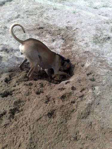 gräva djupa hål