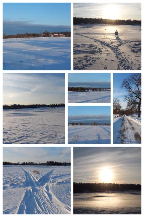Underbara vackra Degernäs, Degerfors. Golfbana på sommarn - Skidspår på vintern