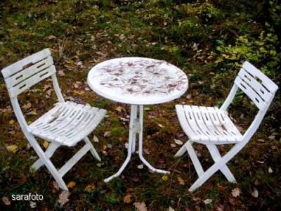 bordet i skogsparken naturligt dukat med barr och löv