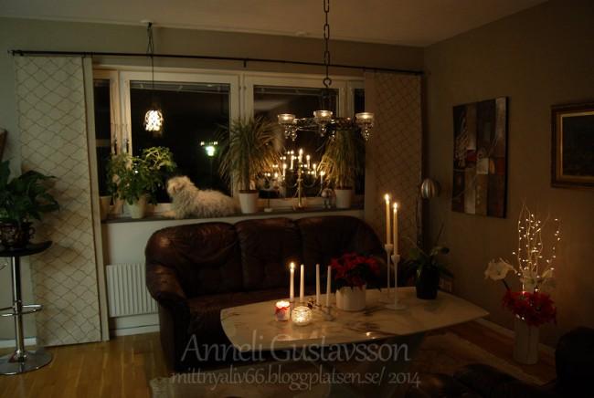 Teddy & jag önskar en trevlig första advent ♥