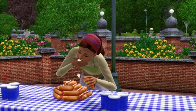 Sims 3 årstider