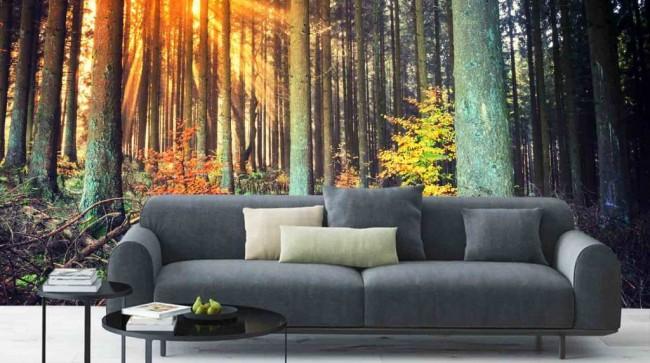 skog tapet höst fototapet solnedgång naturtapet landskap fondvägg vardagsrum