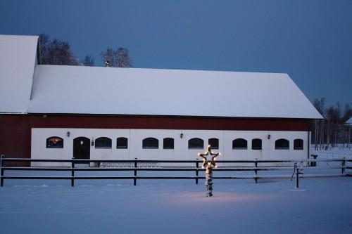 Stallet vinter