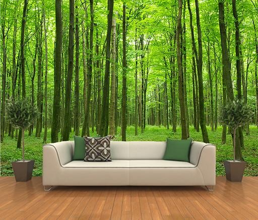 tapet skog trädstammar fototapet träd 3d natur