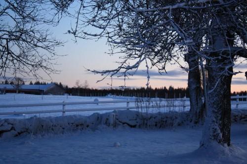 Vinterbild skymning