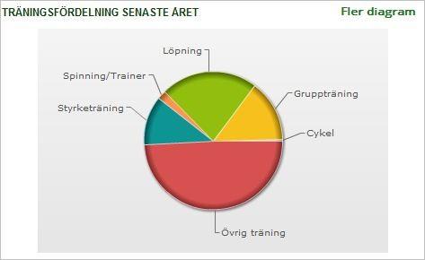 träningsfördelning 2013
