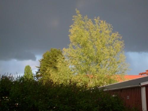 Åska över Norrtälje