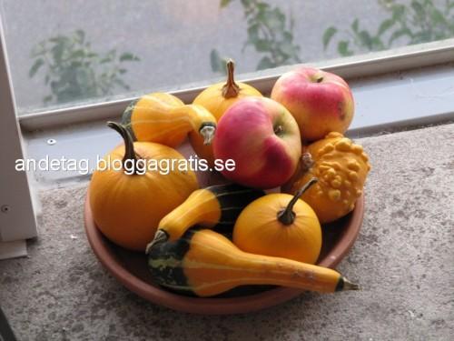 Älskar dem, så läckra + äpplen från mor och far