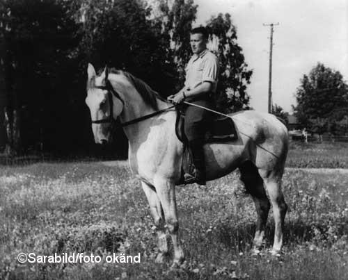 RR på sin kronhäst Krumbukt