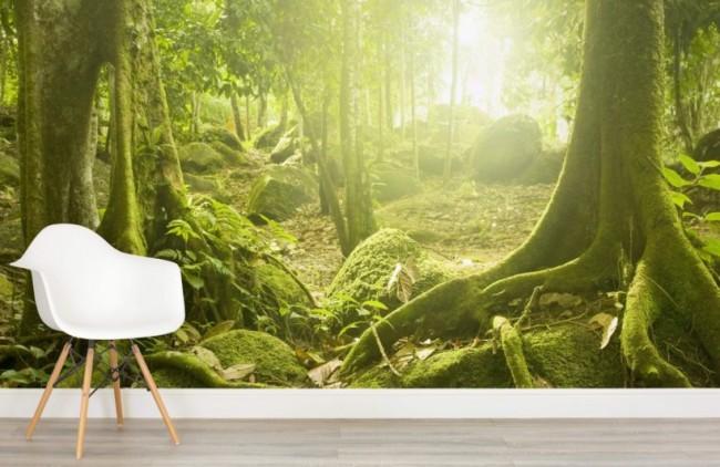 djungel tapet skog fototapet trädstammar