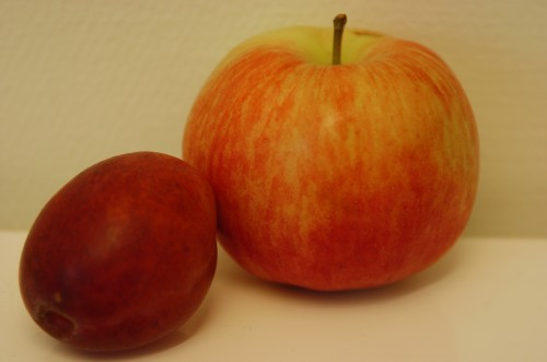 Äppel päppel pirum plommon du blev sylt och du blev mat