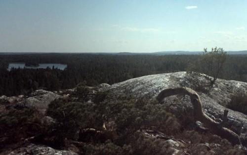 Sörknattens naturreservat. Bild Tony Johansson.