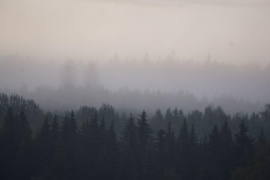 Dimman ligger tät