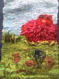 hönapöna