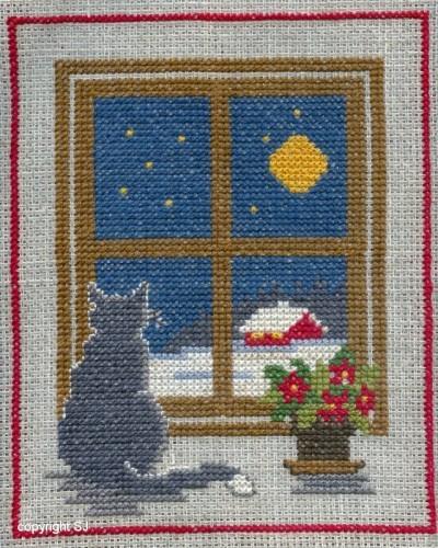 Katt vid fönster