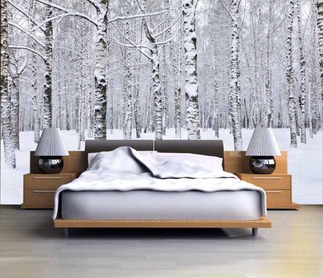 björktapet vinter snö fototapet björkstammar svartvit fondtapet sovrum