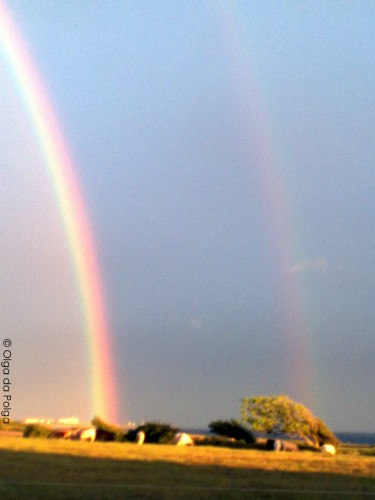 regnbågen