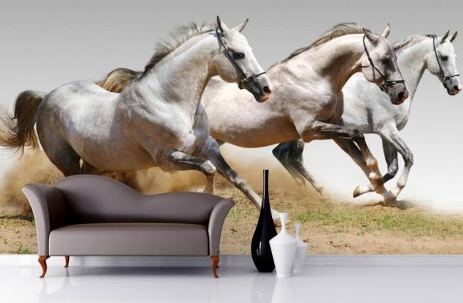 djurtapet hästar ungdomstapet tjejtapet fototapet häst tjejrum