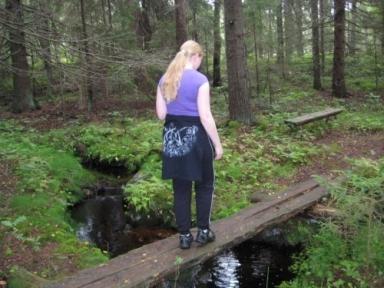 Fint vatten med en bro.