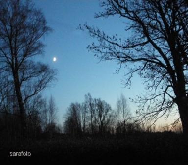 Månen vandrar på fästet där och tittar in gneom rutan
